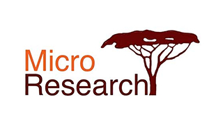 Logo for MicroResearch